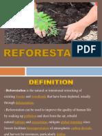 Presentation1ss Reforestation