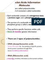 Nucleic Acids & Proteins slides