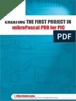 1st Project Pascal Pro Pic v100