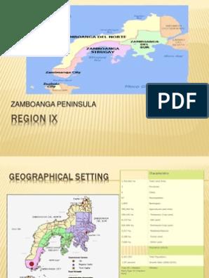 REGION IX Report Powerpoint   Philippines   Mindanao