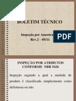 09 BT Inspeção Por Amostragem Rev.2-05.11