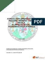aipn4AgriculturaOrganizadadePequena,MedianayGranEscala,su.pdf