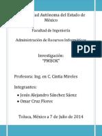 Investigacion PMBOK