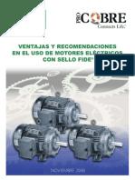 seleccion_de_motores_AE_Procobre_FIDE.pdf
