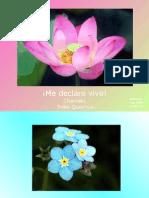 Me_declaro_vivo (fhro)