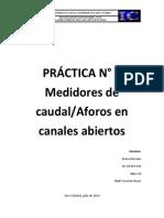 #5 lab fluidos (PRACTICA N°5)