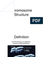 Role of Chromatin in Cytogenetics