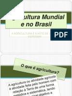 agriculturamundialedobrasil-120109191331-phpapp01