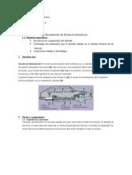 Informe Inyeccion Sistema de Alimentacion.doc