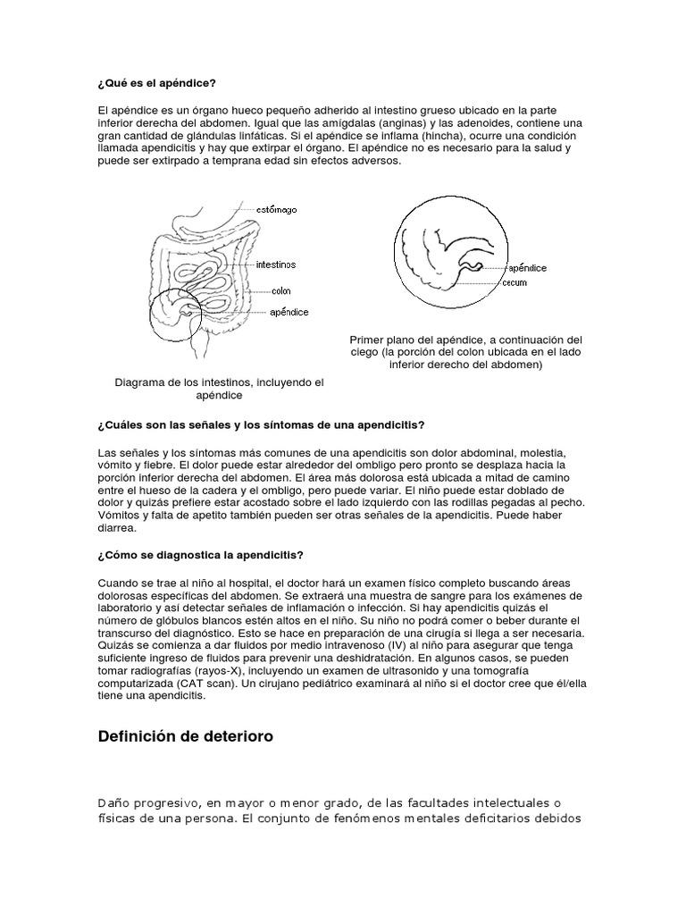 Magnífico Diagrama De Los Intestinos Viñeta - Imágenes de Anatomía ...