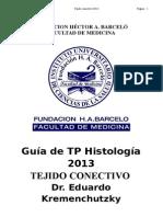 Tejido Conectivo - Histologia