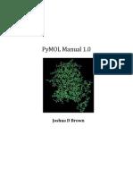 PyMol Manual