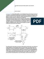 Ecnicas Utilizadas Para Detectar Glicoconjugados y Glicanos en Secciones de Parafina
