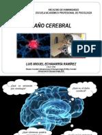 Sesión 6_daño Cerebral