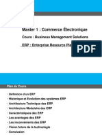 Cours Business Management Solutions Erp