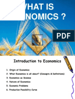 Introduction to Economic