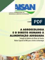 A Agroecologia e Direito Humano à Alimentação Adequada