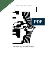 Anatomia Functionala Si Biomecanica. Dora Gavrilescu, Andrei Iliescu 25363675