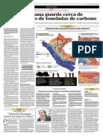 La Selva Peruana Guarda Cerca de 7 Mil Millones de Toneladas de Carbono