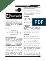 9. FACTORIZACION