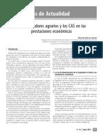 Los trabajadores agrarios y los CAS.pdf