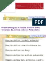 Clase 2. 1 Responsabilidad Civil Por Dano Ambiental