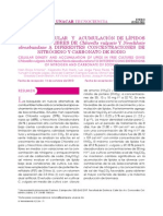 Tema 7 Densidad Celular y Acumulacion