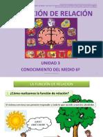 lafuncinderelacinunidad3-101108132528-phpapp02