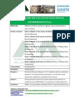 Dip Salud Ocup Semi 2015 1