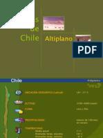 Biomas, Altiplano