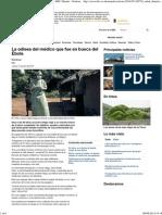 La Odisea Del Médico Que Fue en Busca Del Ébola - BBC Mundo - Noticias