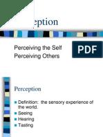 Ch. 2 Perception_STU