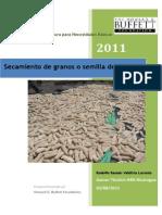 Secamiento de Granos o Semillas de Maiz
