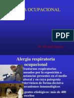 ALERGIA 1