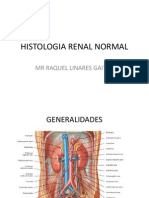 HISTOLOGIA RENAL NORMAL.pptx