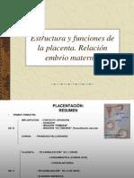 Embrio Sem 11 Placenta