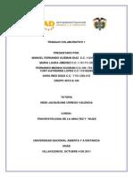 Trabajo Colaborativo 1 Final Spsicopatologia de La Adultez y Vejez