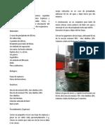 Metodología Extracción.