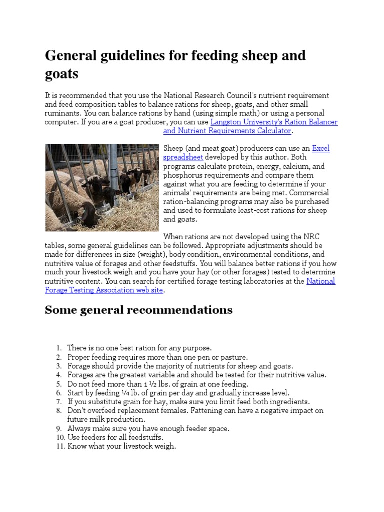 General Guidelines for Feeding Sheep and Goats | Sheep | Goat