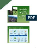 Grass Introduction(M Baynes)