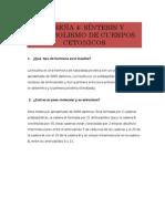 RESEÑA 4Leslie Del Castillo Villafuerte