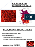 Blood Circ System Note