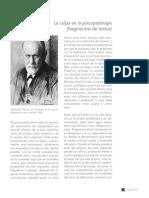 97-117_La Culpa en La Psicopatologia