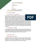 Informe Alejandro Huinca