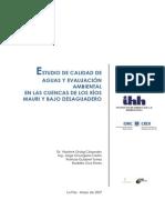 Evaluacion Ambiental Calidad Aguas Cuenca Mauri Desaguadero