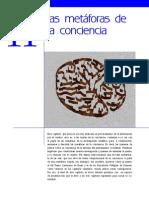 conciencia_capitulo_11