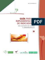 Florverde Guia Indicadores 2013