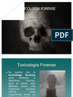78104364-Toxicologia-forense