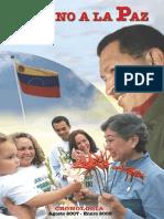 Camino a La Paz Arte Finalweb20080222-0555