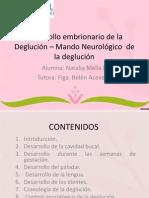 Desarrollo Embrionario de La Deglución – Mando Neurológico